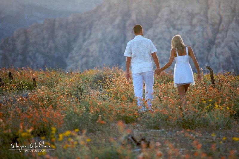 Wayne-Wallace-Photography-Las-Vegas-Wedding-Jowita-Mirek14.jpg